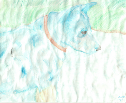 Blue Heeler  (Watercolour Pencil - After Water) by AltaikaTau