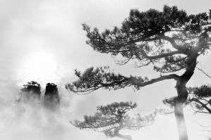 Huangshan -20 by DawnRoseCreation