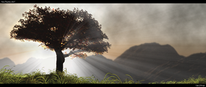 Tree of Life by artech7