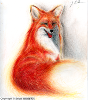 Colour studies - Smiling Fox by SnowWhirls