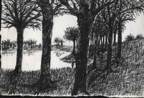 Forest and Lake by MedaGritzko