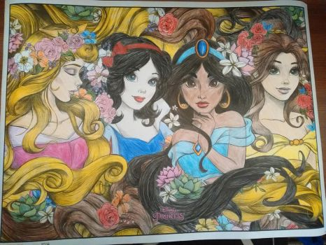 Disney Princesses by thecanklebandit