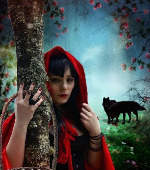 Red riding hood by theheek
