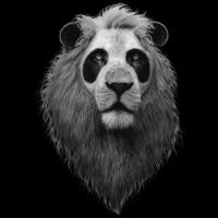 Panda Lion by Design-By-Humans