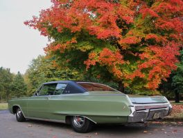 Polara in the Fall by finhead4ever