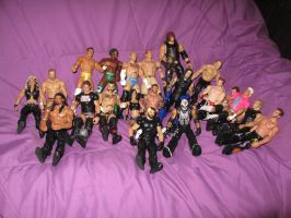 My WWE dolly case by Fallonkyra