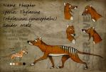 Thylacine Sheet Phosphor by Culpeo-Fox