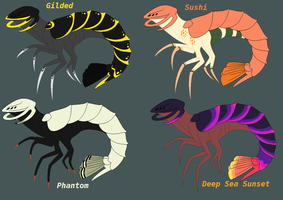 Surgeon Shrimp adopts by eco226