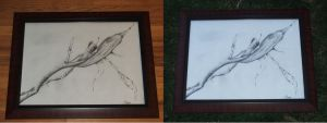 Plant Study 3 Framed 2 by meathive