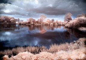 Lake Wolny infrared by MichiLauke