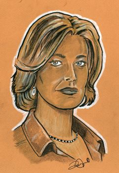 Skyler White Breaking Bad by coldgopher
