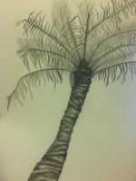 Palm Tree by PJParty