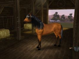 Sims3 Pets Creations Spirit by Senwolf10