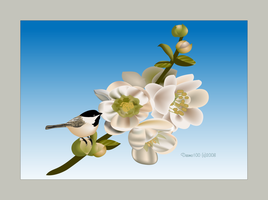 Flowering Quince and Chickadee by desmo100