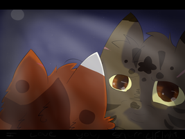 ''I love you, Squirrelflight.'' :Oldish: by SimplyJLS