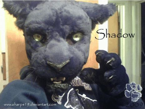 Shadow Fursuit by Sharpe19