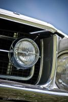 68 mustang detail by AmericanMuscle