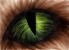 Cats eye by selftaughtartist1