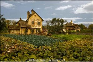 Farmhouse Garden by SnapperRod
