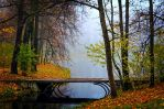 Misty Autumn... _18_ by my-shots