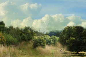 Rural Landscape by famoore