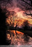 Pink Sunset Over The Pond III by darkcalypso
