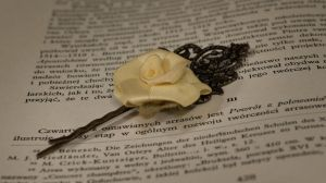 pin - yellow rose by Sizhiven