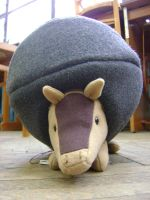 The happiest armadillo no 2 by Hylexuly