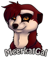 Meerkat-Gal Commission by Simply-Jax