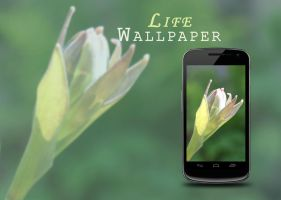 Life Wallpaper by mysterious-emerald