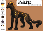 Hahkin by secxret