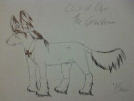 CCO's The Gentleman (Sketch) by SparrowIllustrations