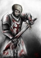 Arn The knight Templar by Patrike