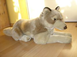 Large Wolf Anna Club Plush WWF by DreamyArcticWolf