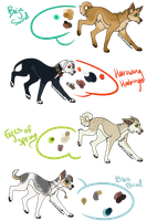 Adoptables |Paypal and Points| (CLOSED) by Sargeant-Knoxx
