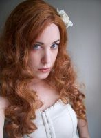 White Rose VII by fetishfaerie-stock