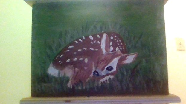 Fawn by allixson