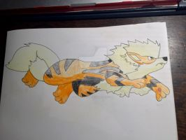 Arcanine coloured with shading by Car-lover33
