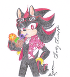 Hawaii Shadow the Hedgehog_Project by CherryChocoffe