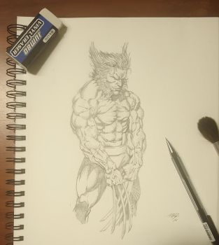 Wolverine study by HART1991