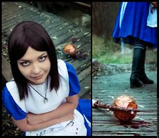American McGee's Alice VI by scentless-flower