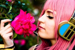 Luka - Roses Smells Like... by BertLePhoto