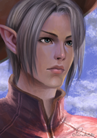 Elf by Paradiss2009