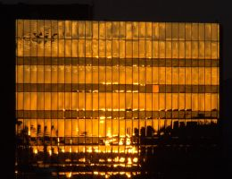 Burnished Sunlight on Amber Glass by PamplemousseCeil