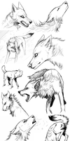 Sketches 6 by Haunthid