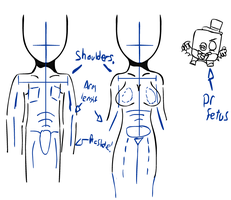 Human anatomy test. by SCP-079