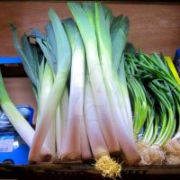 Leeks and Onions (nr Archway in Islington) by nannusinsanus