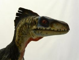 Velociraptor modified by Baryonyx-walkeri
