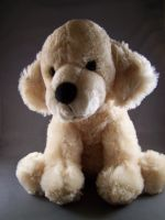 Teddy bear stock 3 by Aphoticbeauty