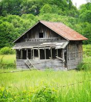 old shed 2 by teresastreasures72